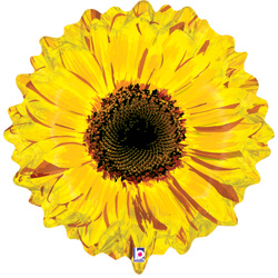 24B YELLOW FLOWER