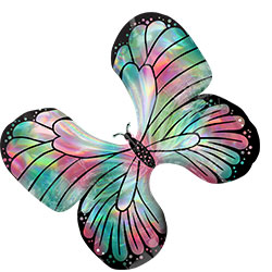 30A TEAL & PINK BUTTERFLY (HOL