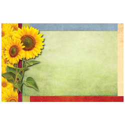 ENCL CARD SUNFLOWER BORDER BLA